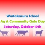 Waitakururu School Gala
