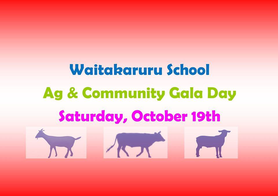 Waitakururu School Gala