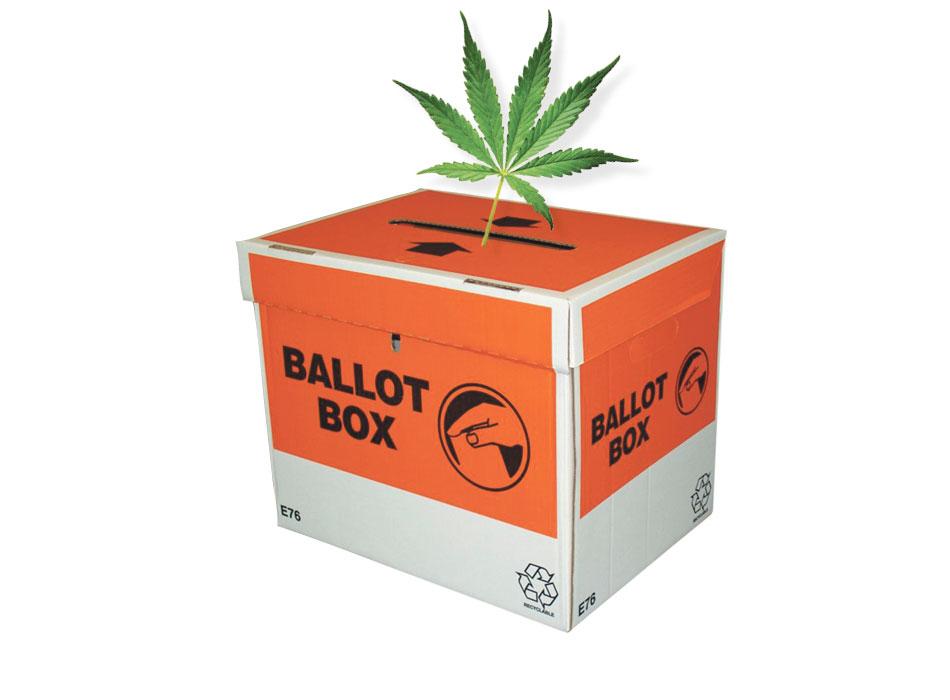Cannabis Referendum Coromandel - CFM Radio Station